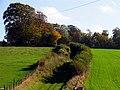 Byway at Manor Farm near Chaddleworth - geograph.org.uk - 71256.jpg