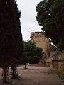 Córdoba Spain - Alcázar de los Reyes Cristianos (18377106470).jpg