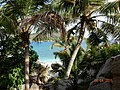 COCOS ISLAND 2015 - panoramio (8).jpg