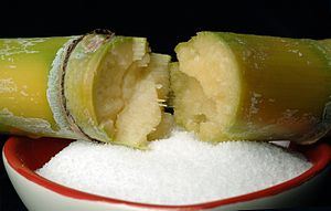 Sugarcane - Sugarcane and bowl of refined sugar