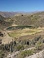 Cañon del Colca - Peru 05 (3786223884).jpg