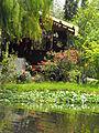 Cabaña en canal no turistico.JPG
