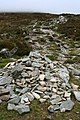 Cairns by the path on Mangerton Mountain - geograph.org.uk - 458086.jpg