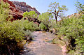 Calf Creek Canyon05.jpg