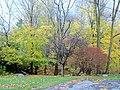 Camden, ME 04843, USA - panoramio (51).jpg