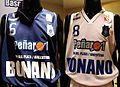 Camisetas Peñarol 2008-09.JPG