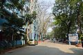 Campus Road - Jadavpur University - Kolkata 2015-01-08 2382.JPG
