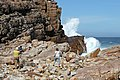 Cape of Good Hope - panoramio.jpg