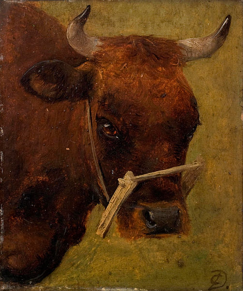 File:Carlo Dalgas - Head of a cow. Study. - Google Art Project.jpg