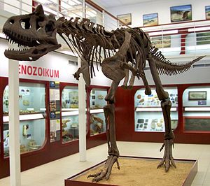 Carnotaurus - Mounted skeletal cast at Chlupáč Museum in Prague