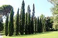 Caserta jardín inglés. 32.JPG