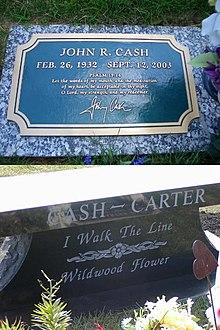 Cashcartergrab.jpg
