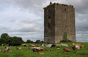 Upper Ossory - Cloburren Castle, once home to Teige Fitzpatrick, 4th Baron Upper Ossory.