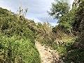 Cava Santa Panagia 3.jpg