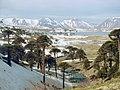 Caviahue, Argentina - panoramio.jpg