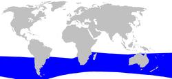 .::Zifio de Hector 250px-Cetacea_range_map_Hectors_Beaked_Whale