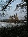 Château de Bourgon vu de la lisière de la forêt..jpg