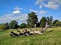 Charlecote park - panoramio (13).jpg