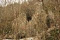 Cheile Vârghișului - Varghis Gorges - panoramio (30).jpg