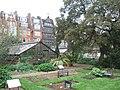 Chelsea Physic Garden - geograph.org.uk - 1808596.jpg