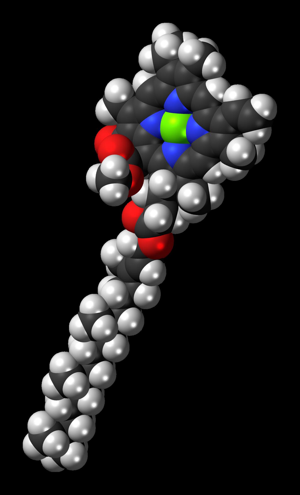 chlorophyll a wikipedia