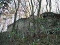 Choustníkovo Hradiště 11.JPG