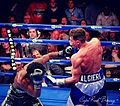 Chris Algieri (right) 2014-06-15 08-21.jpg