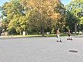 City of Vilnius,Lithuania in 2019.08.jpg
