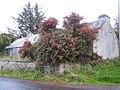 Cloonbeg - geograph.org.uk - 273968.jpg