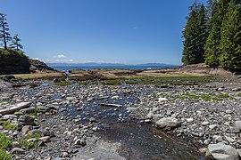 Coast by Tom Baird Creek, Juan de Fuca Trail, Vancouver Island, Canada 45.jpg
