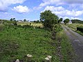 Coolkenny Townland - geograph.org.uk - 862053.jpg