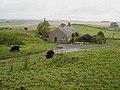Corner Cottage, Sewingshields - geograph.org.uk - 1020182.jpg