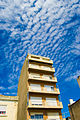 Cotton Sky (1032495469).jpg