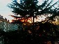 Coucher de soleil angevin 3.jpg
