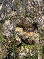Covadonga 4 (4602864186).jpg
