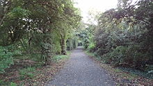 Cranham Brickfields path.JPG