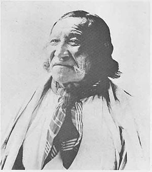 Crow Dog - Image: Crow Dog