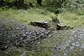 Culvert above Belle Grange - geograph.org.uk - 894372.jpg