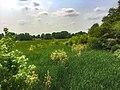 Cuyahoga Valley National Park (3b405159-88e4-4875-8cad-164a5fcb96aa).jpg