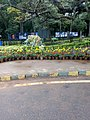 Cycling art cubbon park, bangalore, india.jpg
