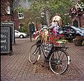 Cyclist (218790835).jpeg
