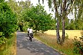 Cyklostezka Ohře u Nebanic červenec 2019 (2).jpg