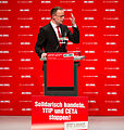 DIE LINKE Bundesparteitag 10. Mai 2014-82.jpg