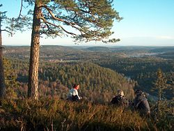 View of Andebu seen from Dalaåsen. Andebu is mainly forests and lakes. (Photo: Gunnar Gallis)