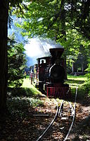 Dampflok Schlossgartenbahn Karlsruhe.JPG