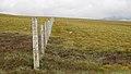 Deer Fence (An Sgòr Dubh) on Mar Lodge Estate (29JUL17) (19).jpg