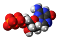 Deoxyguanosine-diphosphate-anion-3D-spacefill.png