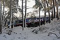 Derailed locomotive at Carrbridge - geograph.org.uk - 1679729.jpg