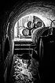 Destileria Los Nichos - Flickr - Casper Abrilot.jpg