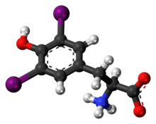 Ball-and-stick model of the diiodotyrosine molecule as a zwitterion